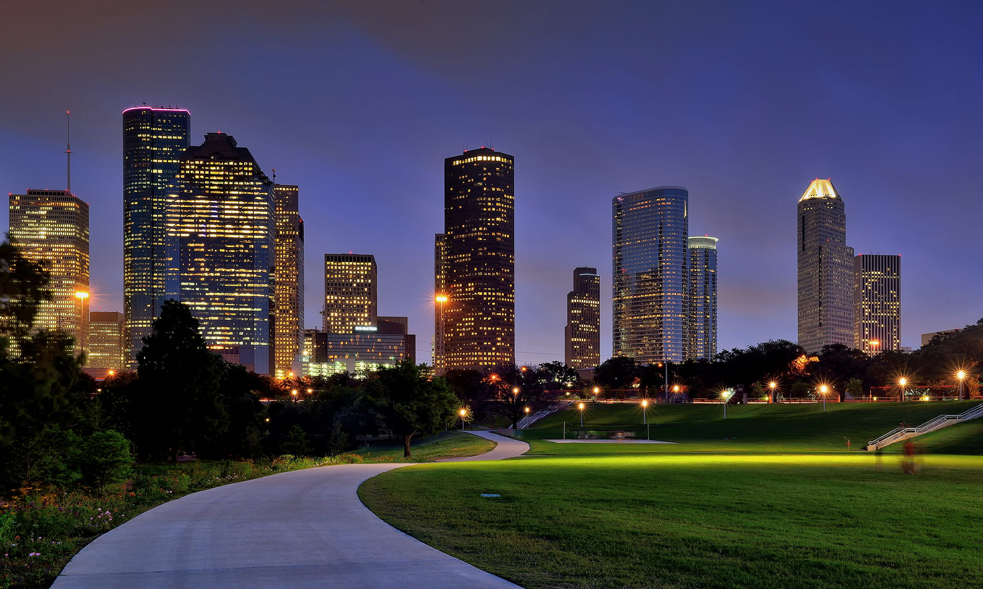 Houston Skyline from Park at Night