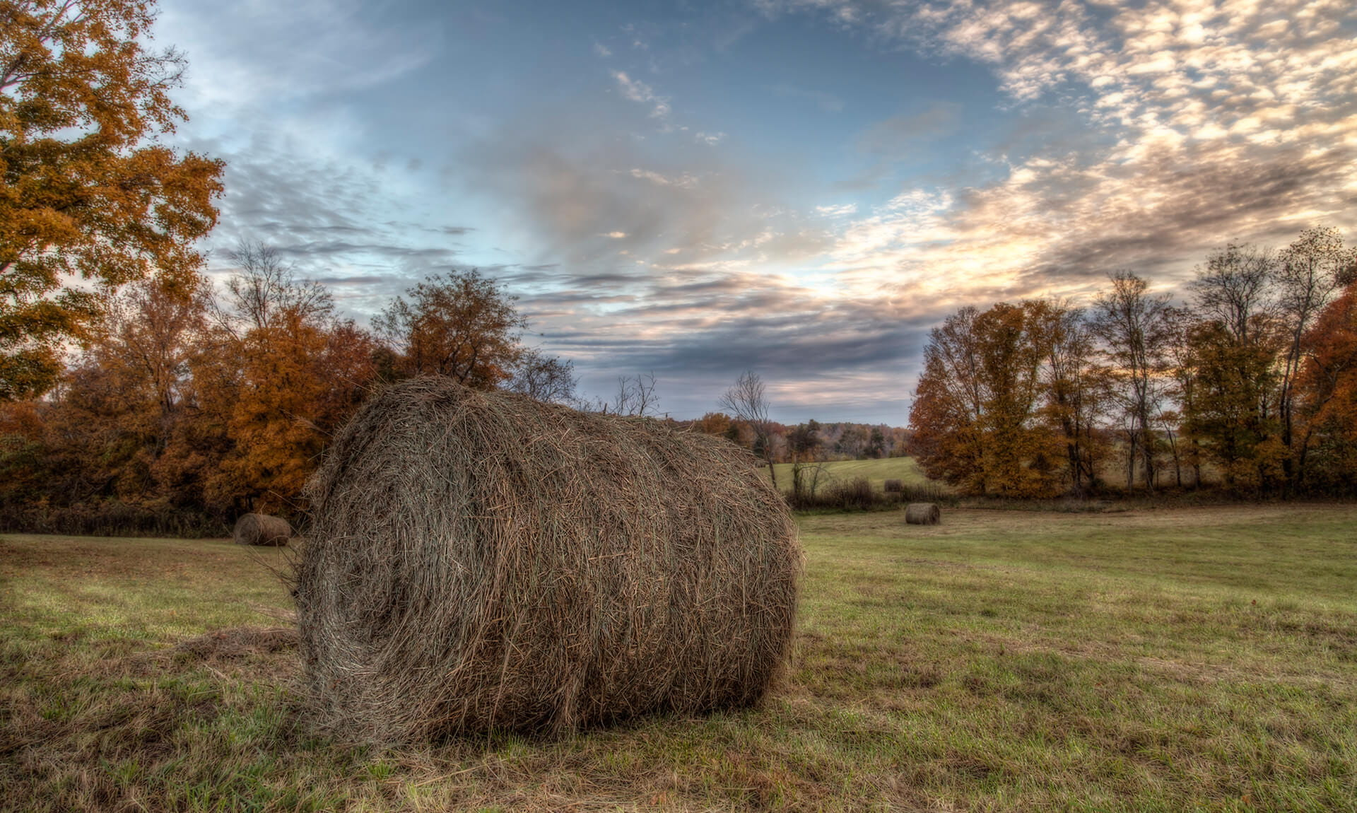 Ball of hay landscape