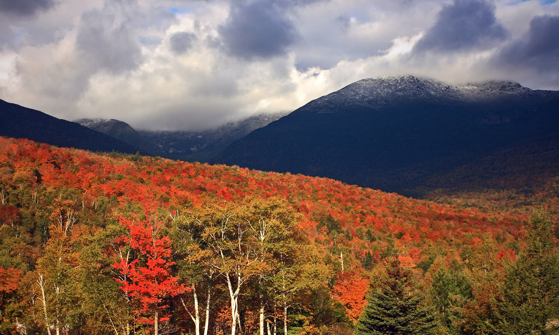Autumn Foilage in White Mountains