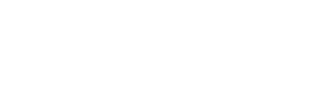 Bold Financial Partners