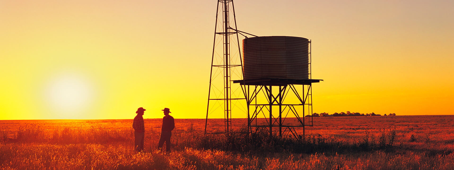 Two wheat farmers standing in a field at sunset next to a silo.