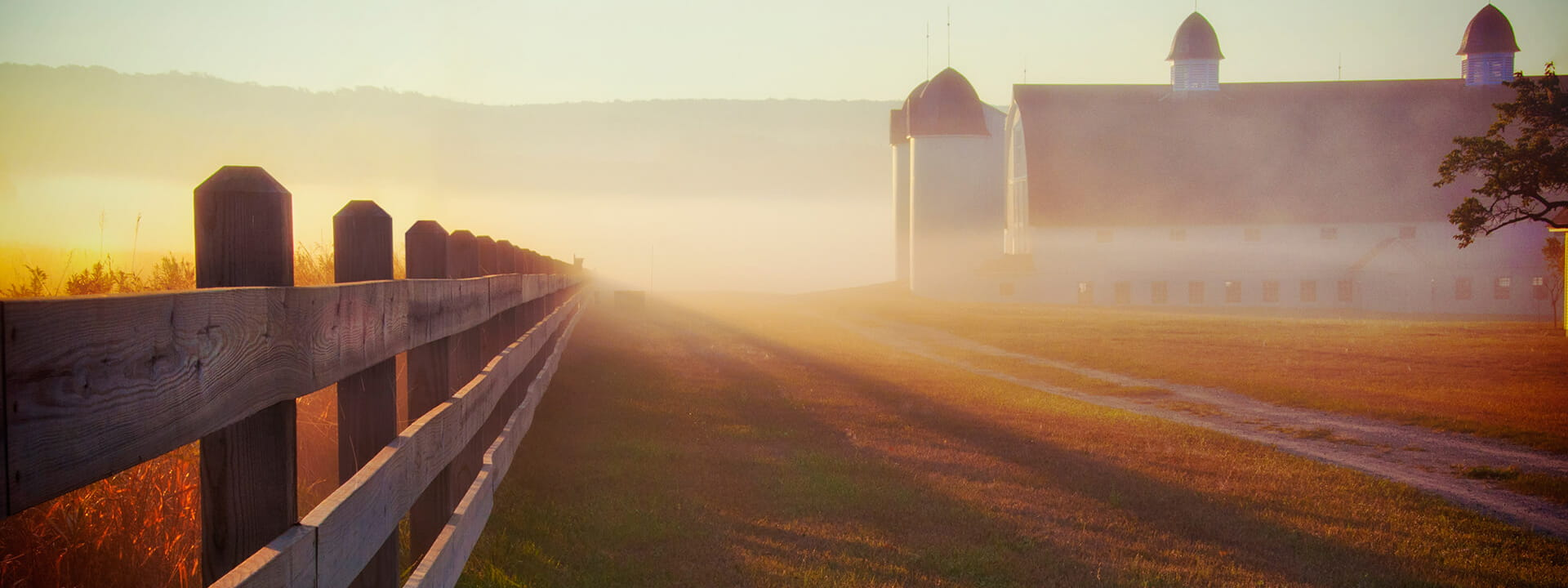 A hazy morning on a mid-west farm.